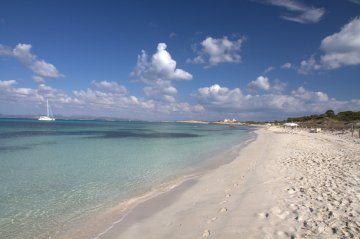 Formentera Community Manager